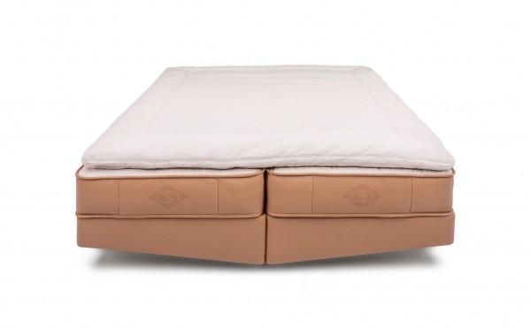 DS-1151 Bett